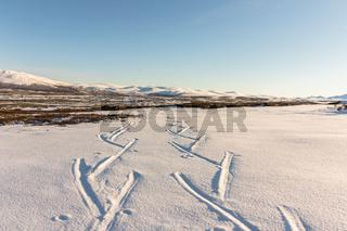 Ski tracks in winter mountains in Dovre, Norway.