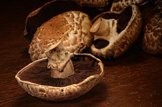 Fresh portobello mushrooms