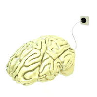 yellow Electric brain