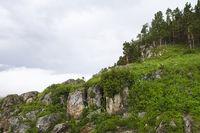 Mountain, Lagonaki, Caucasus, Russia