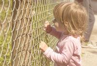 Little girl holding fence
