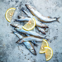 Fresh catch Shishamo fish fully eggs flat lay on shabby metal background. Shishamo fish is popular fish for Japanese cuisine cooking Tempura. Fresh Shishamo fish tempts buyers at fresh seafood stall.