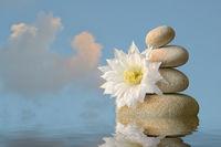 weiße Blüte mit Steinpyramide