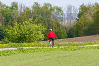 Cyclist on a summer country road