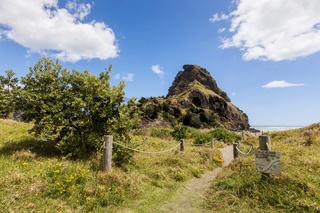 Lion Rock Piha New Zealand