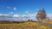 Landweg mit Birken im Norden von Berlin an einem sonnigen Wintertag