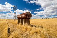Wheat Fields in Moolort Plains