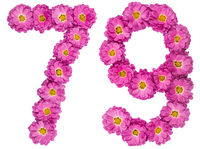 Arabic numeral 79, seventy nine, from flowers of chrysanthemum, isolated on white background