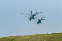 Two military helicopters