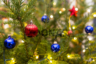 Weihnachtsbaum, Christmas tree