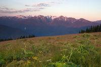 Sunset Hurricane Ridge Olympic Range National Park Washington USa
