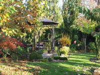 Herbstlicher Garten mit Pavillon