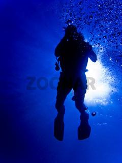 Tauchersilhouette im Gegenlicht, diver silhouette