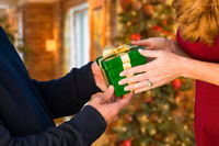 Man and Woman Gift Exchange in Front of Decorated Christmas Tree.
