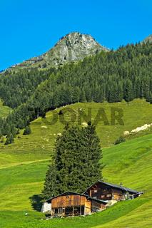 Alpwiesen mit Bergbauernhof und Schutzwald im Prättigau bei St. Antönien, Graubünden, Schweiz