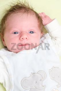 neugieriges baby