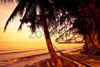 Straw hammock on the tropic beach on sunset
