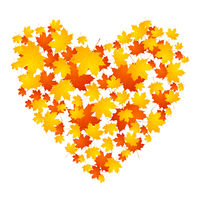 Autumn concept heart from maple leaves