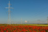 High-voltage power lines on the poppy fields of Crimea