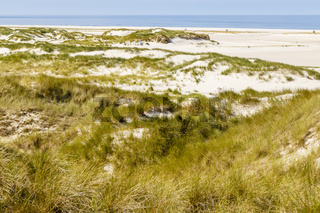 Strand mit Dünen auf Amrum, Deutschland, beach with dunes on Amrum, Germany
