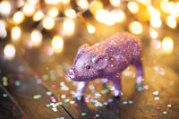 Kleines rosa Schweinchen