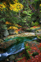 Scenic creek in tranquil autumn forest