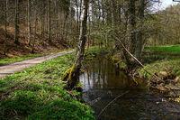 Schaichtal; Naturpark Schoenbuch; Baden Wuerttemberg; Deutschlan