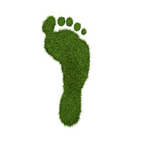 Green Grass Footprint