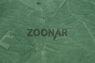 Kondor Figur Nazca Linie Peru