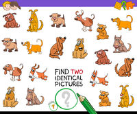 find two identical pictures game with dogs
