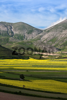 The plain of Castelluccio