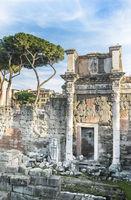 portikus, trajansforum