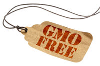 GMO free sign on paper price tag