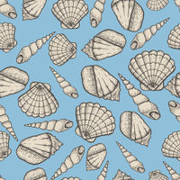 Seashell collection hand drawn aquatic doodle illustration. Sketch seamless pattern.