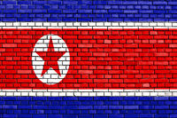 flag of North Korea painted on brick wall