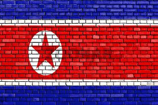 flag of North Korea painted on brick wall
