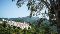 Die weißen Dörfer von Andalusien im Korkeichenwald
