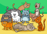 cats characters group cartoon illustration