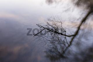 Spiegelung, Reflection