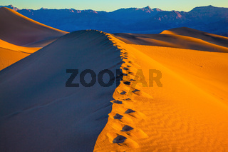 Sandy Desert in Mesquite Flat, USA