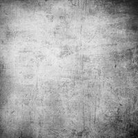 Grunge wall. High resolution textured background.