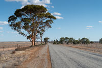 Road, Outback of Western Australia
