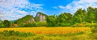 Beautiful rural landscape. Luang Prabang. Laos. Panorama