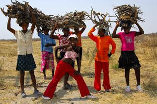 Holzsammler, Botswana