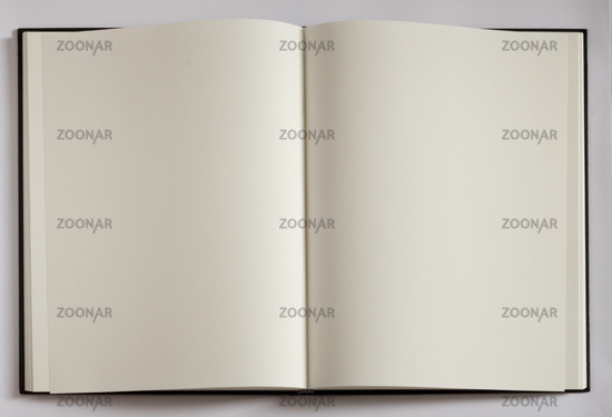 Blank pages for placing your text