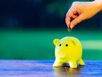 Hand inserting a coin into green piggy bank - ecology savings concept