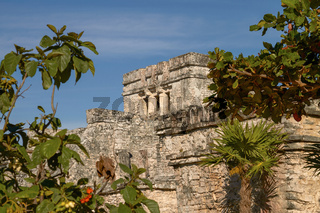 Mayan Ruins of Temple in Tulum Mexico.