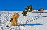 Wüeschte Silvesterkläuse ziehen am Alten Silvester von Haus zu Haus