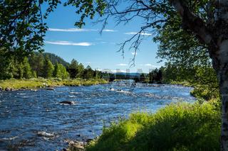 Golsfjellet in Norwegen-14