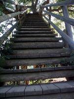 Leiter zum Baumhaus